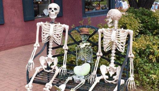 【羽原骨骼標本研究所】敷地から500人分の人骨を発見‼︎まさしくホラー