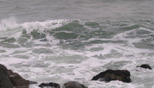 皆川敦貴・真冬の海に元同級生を裸で飛び込ませる「勝手に海に飛び込んだ」