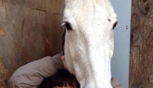 『田村純子』住友重機械工業の労働組合から約10億円を着服。フェイスブックには馬とポルシェ。移動はグリーン車