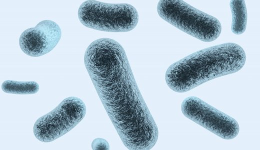 『新型コロナウイルス』小学生2人にも感染確認。中富良野小学校