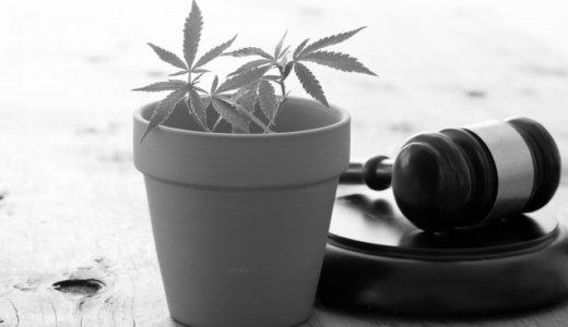 北見市端野町の美容師「小野慎也」持続化給付金で器具を買い大麻草を自宅で栽培。経営する美容室はどこ?