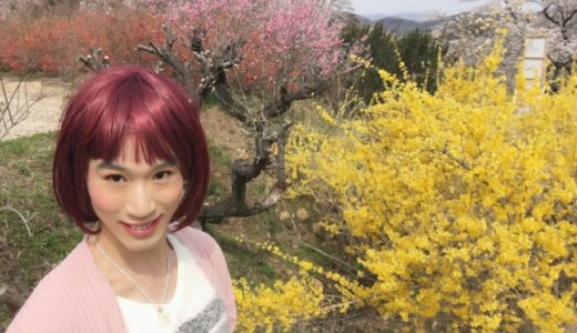 県立府中東高校の教師「中岡浩」(36)が女装して「コロナの湯」の女湯に入り現行犯逮捕。「男のわたしが女湯に入浴したことについては申し訳ない」と変なコメント。Facebookと顔画像は?