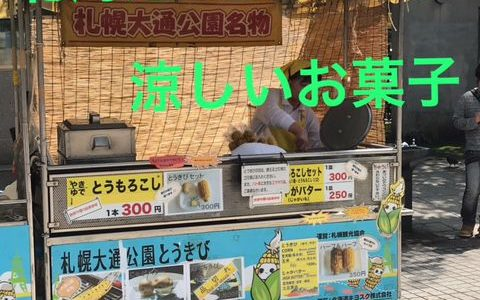暑い時にぴったりの北海道を代表する名店のお菓子を紹介します‼︎六花亭『水無月』『六花亭セレクト』と柳月の『三方六の切れ端』【北海道スイーツの旅】