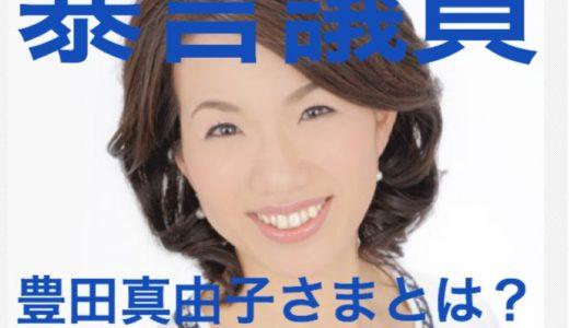 『暴言議員 豊田真由子さま』ってどんな人⁉︎お父さんのためにわかりやすく解説します。