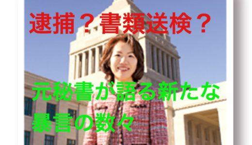 『ピンクモンスター豊田議員』豊田真由子さまは「逮捕」か「書類送検」か‼️幼稚園児にも悪影響が。