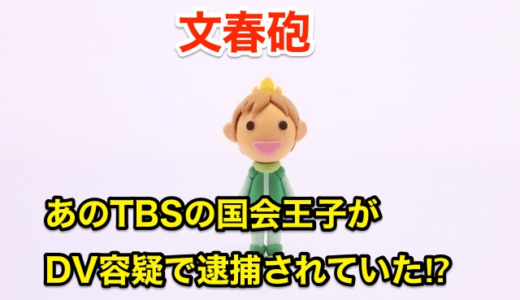 【文春砲】TBS国会王子がDV容疑で逮捕されていた‼︎