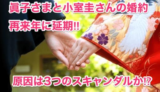 【眞子さまと小室圭さんの婚約再来年に延期】原因は3つのスキャンダルか⁉︎