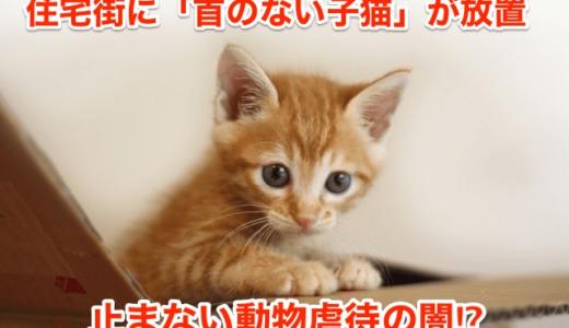 【残虐】住宅街に「首のない子猫」が放置‼︎止まない動物虐待の闇⁉︎