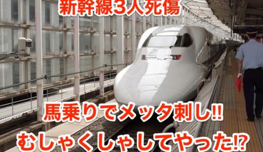 【新幹線3人死傷】馬乗りでメッタ刺し‼︎むしゃくしゃしてやった⁉︎