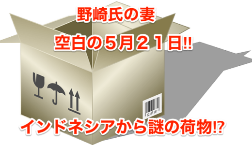【野崎氏の妻】空白の5月21日‼︎インドネシアから謎の荷物⁉︎
