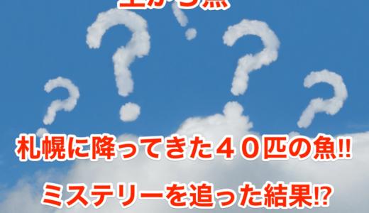 【空から魚】札幌に降ってきた40匹の魚‼︎ミステリーを追った結果⁉︎