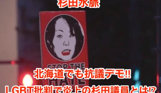 【杉田水脈】北海道でも抗議デモ‼︎LGBT批判で炎上の杉田議員とは⁉︎