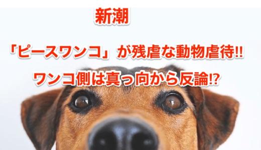 【新潮】「ピースワンコ」が残虐な動物虐待‼︎ワンコ側は真っ向から反論⁉︎